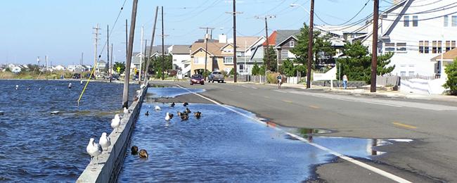 flood_seasidePark_sm_crop.png